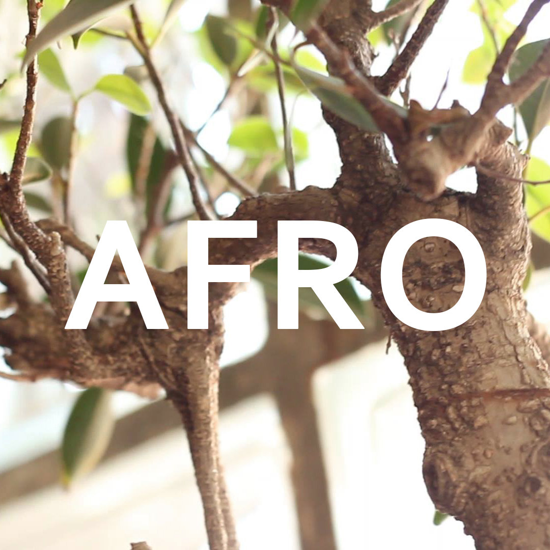 Afro (EP)